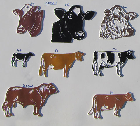 cattle3