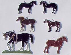 horses1th