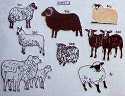 sheep3th