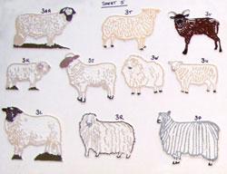 sheep5th